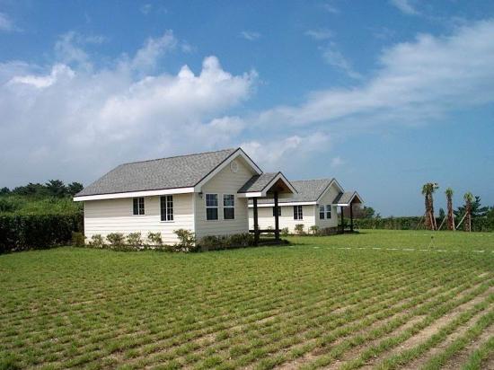 구조는 단순하게, 자재는 공동구매로… 전원주택 반값에 지을 수 있다