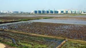 토지 개발 성공 지름길은 각계각층 '인맥 허브' 만들기