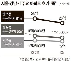 투기 한풀 꺾였지만 … 서울 부동산 '거래 절벽' 현실화